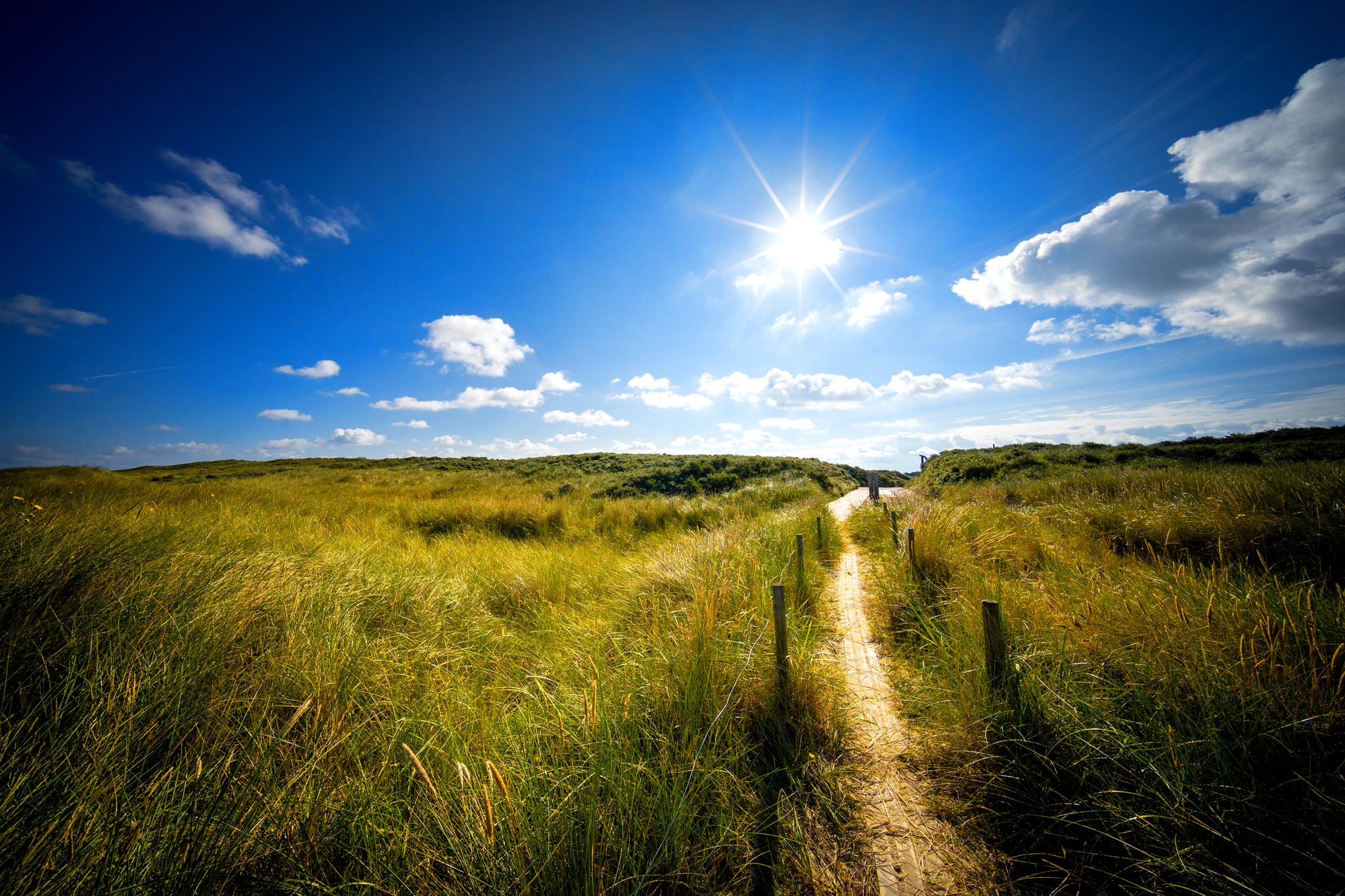 Sommerliche Wanderpfade auf Langeoog © Andreas Falk