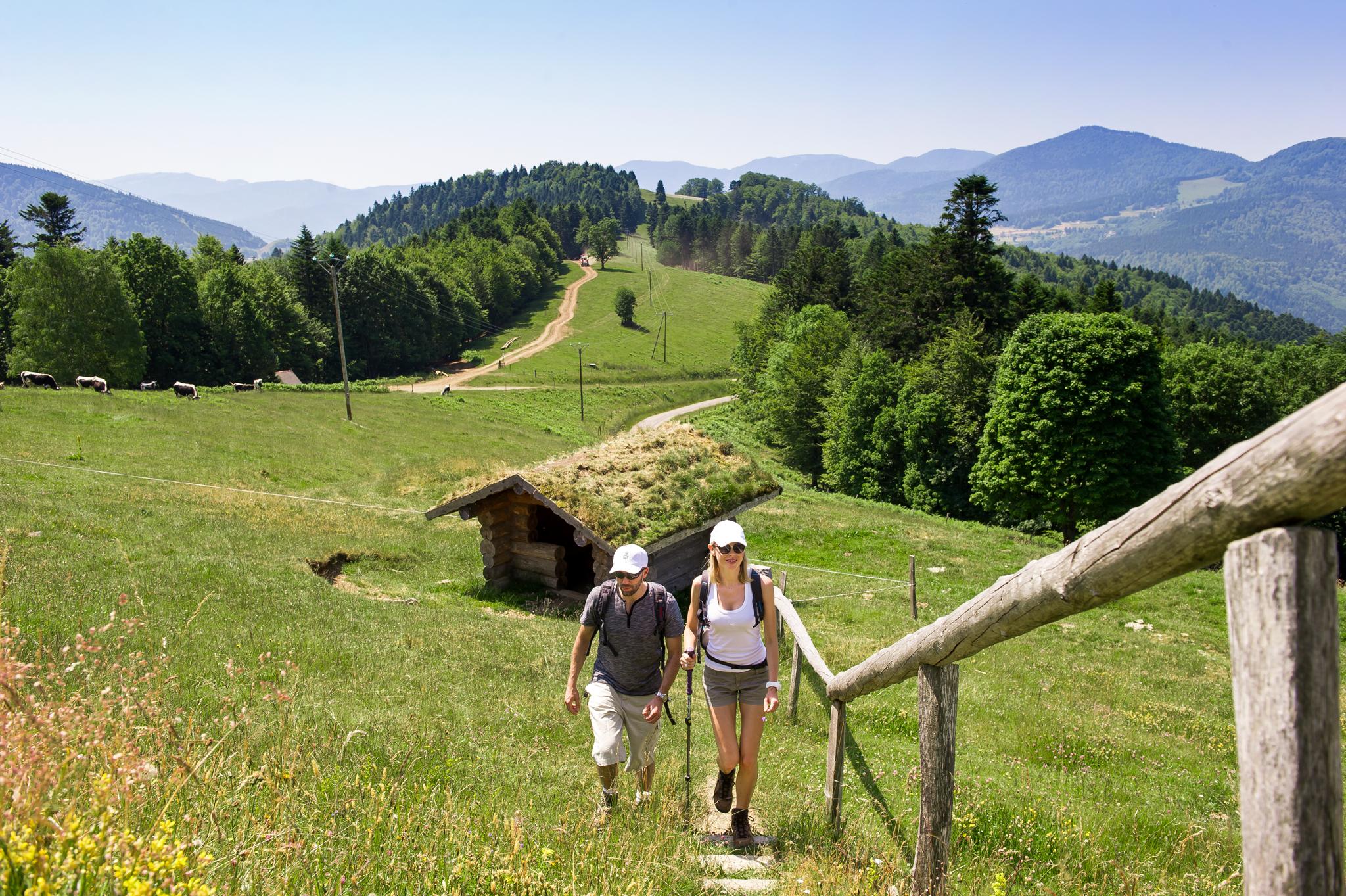 Wandern im Vogesenmassif © INFRA, Massif des Vosges