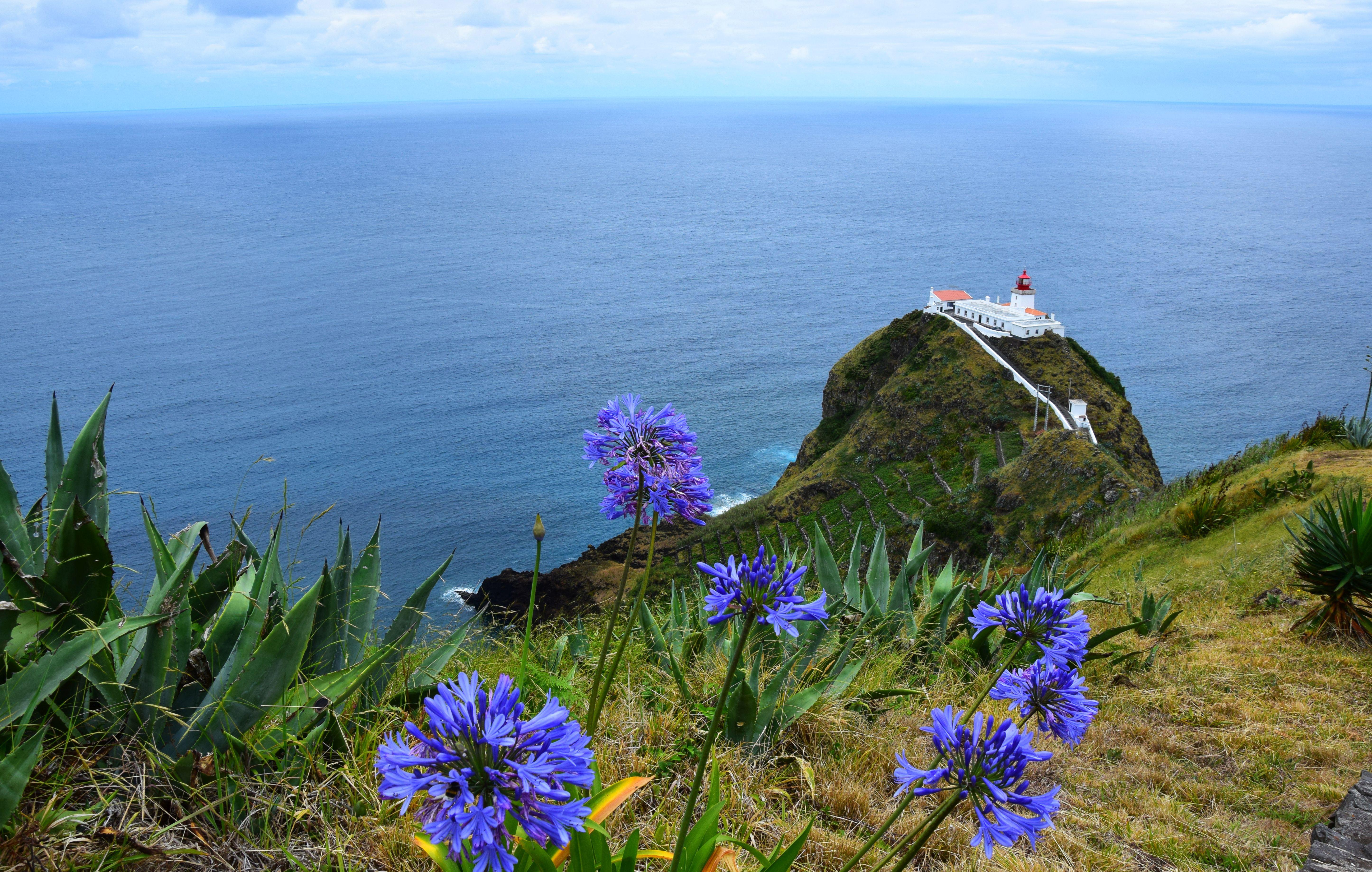 Der Leuchtturm von Goncalo Velho auf  Santa Maria, Azoren © picotours