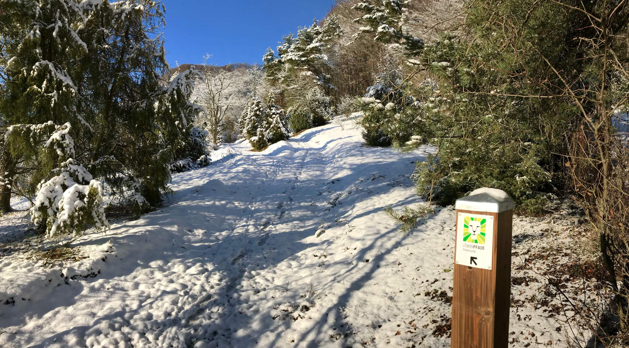 Winterwanderung auf dem Löwenpfad Felsenrunde © Landratsamt Göppingen