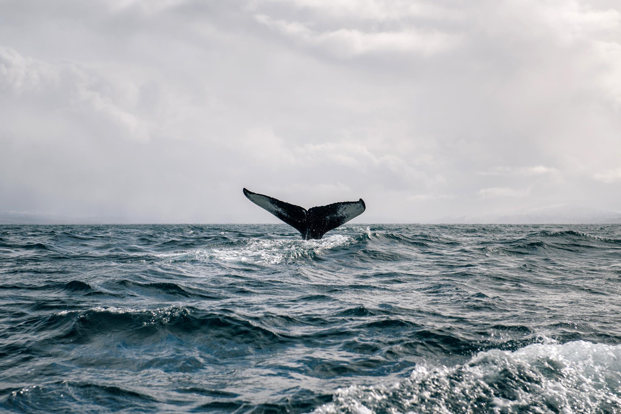 © Visit Norway