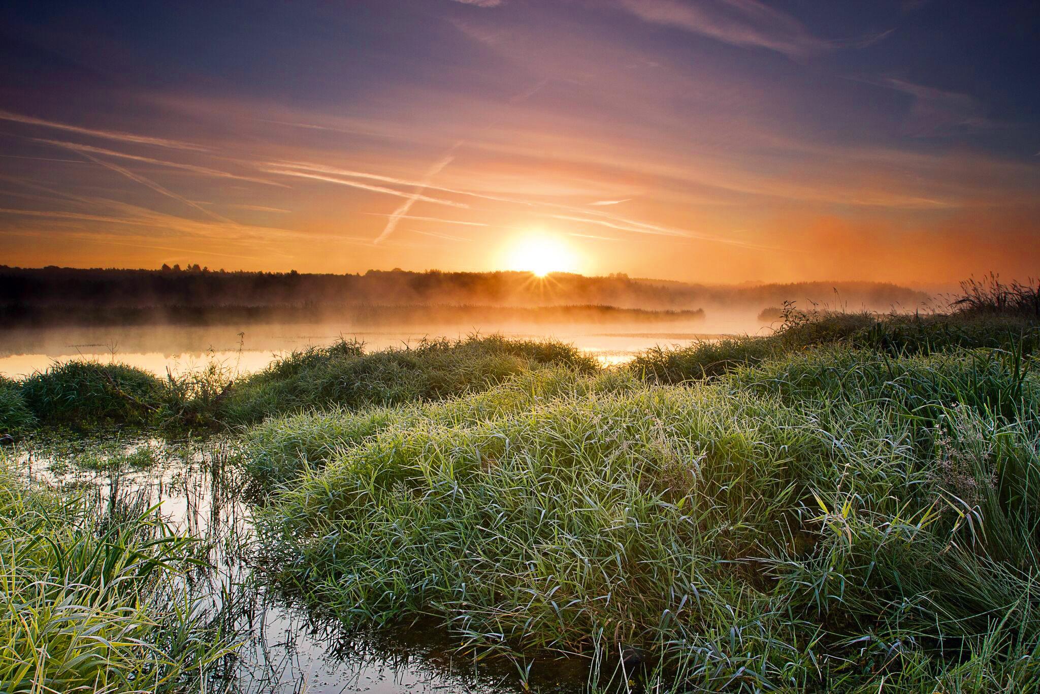 Natur erlebbar machen © VDN/Waldfreundin