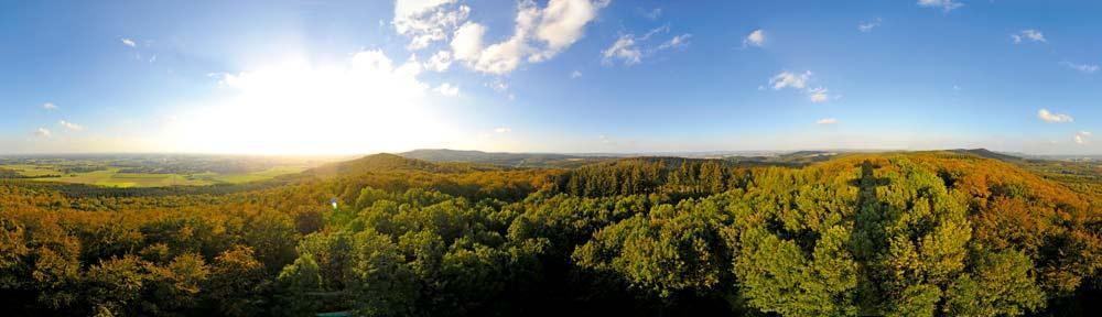 Waldpanorama im Osnabrücker Land © Natur-und UNESCO Geopark TERRA.vita