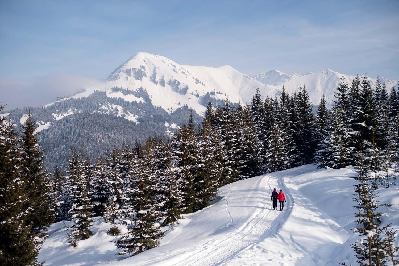 Präparierter Winterwanderweg zur Ehenbichler Alm © Tirol Werbung, Jörg Koopmann
