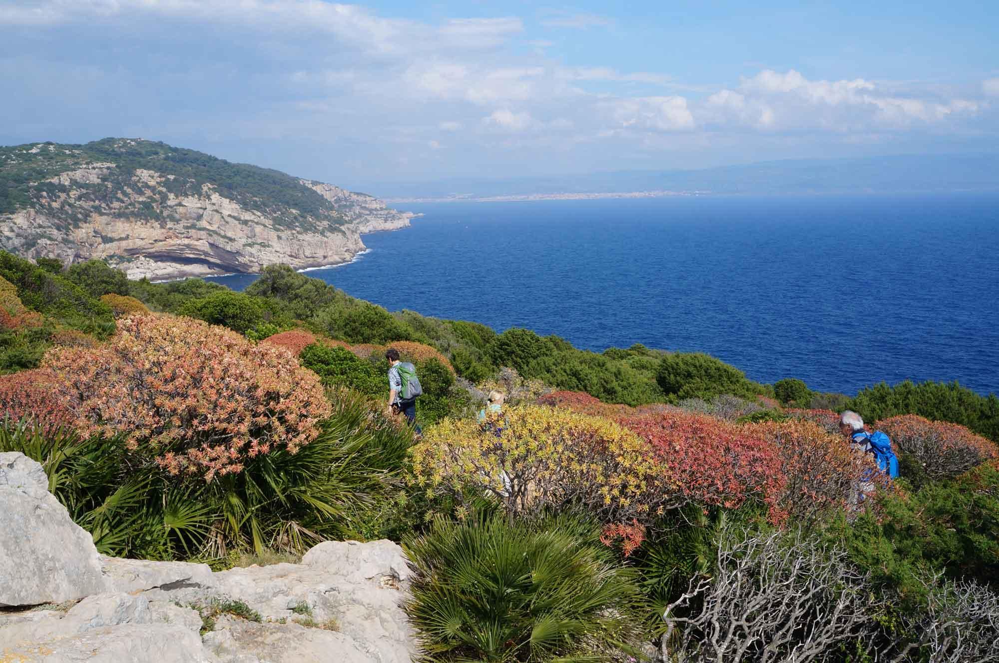Wanderung zur Punta del Giglio © Heideker Reisen