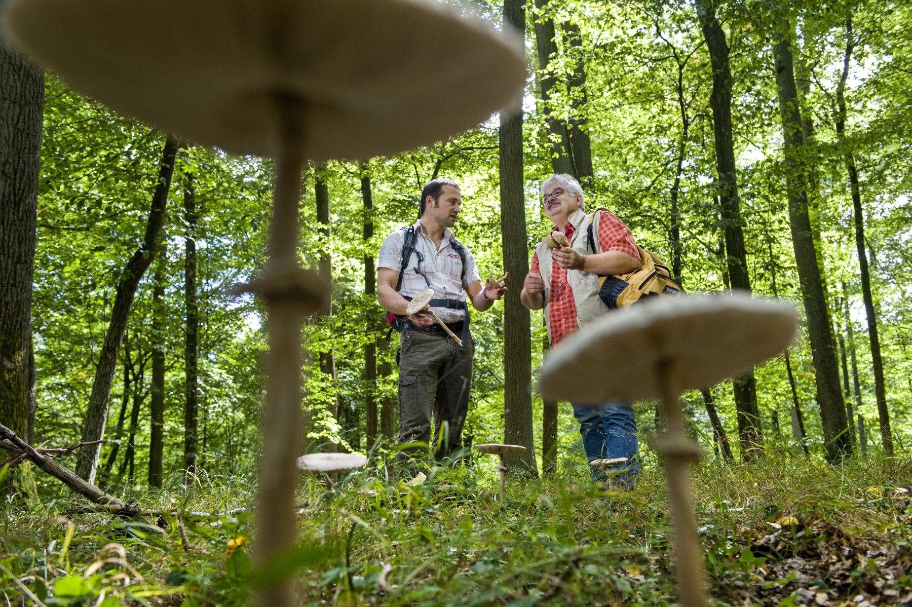 Deutschlandweit zu Fuß durch die Natur ©A. Hub / Deutscher Wanderverband