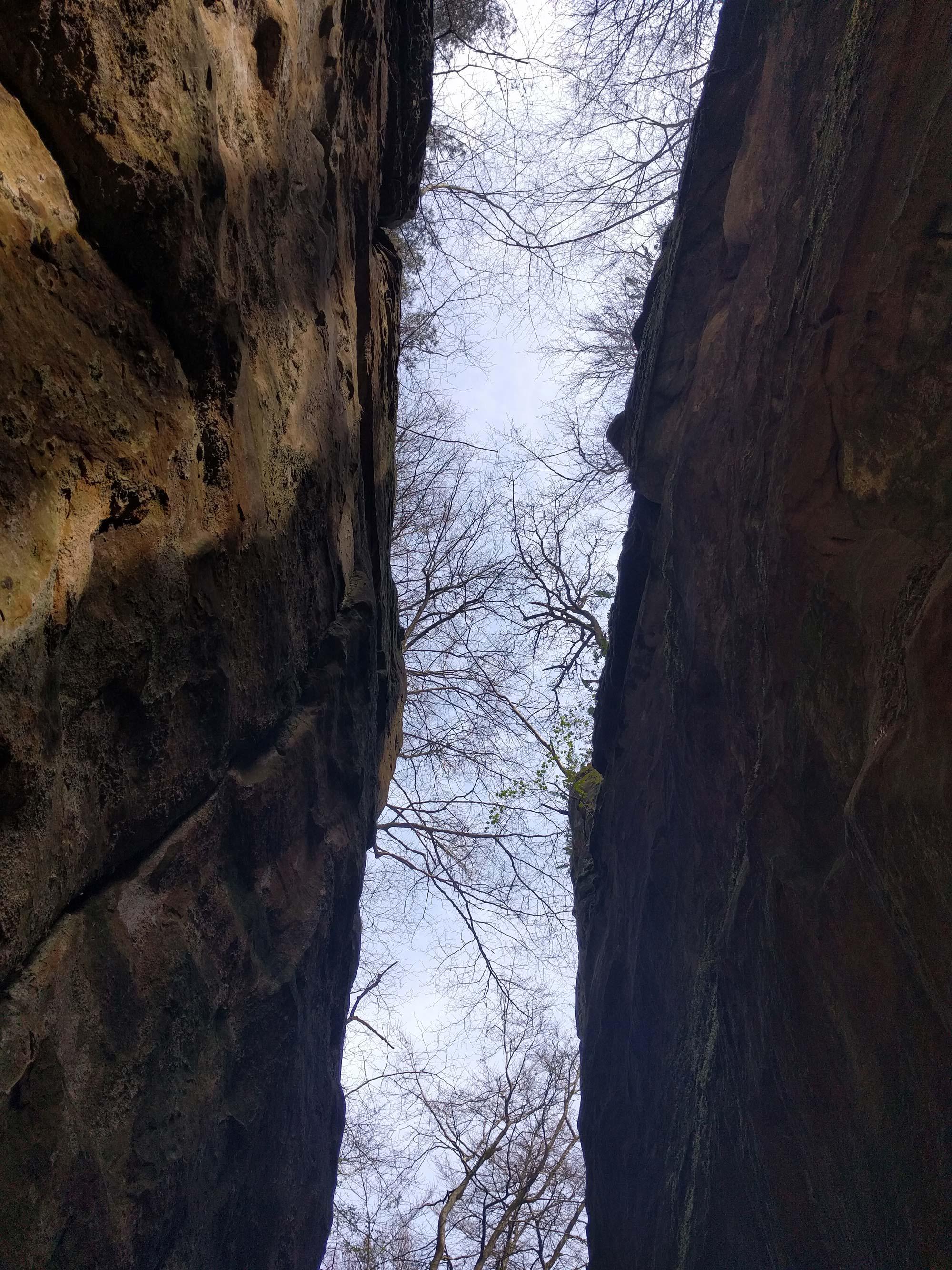 Der Blick aus der Teufelsschlucht nach oben © Ricarda Große