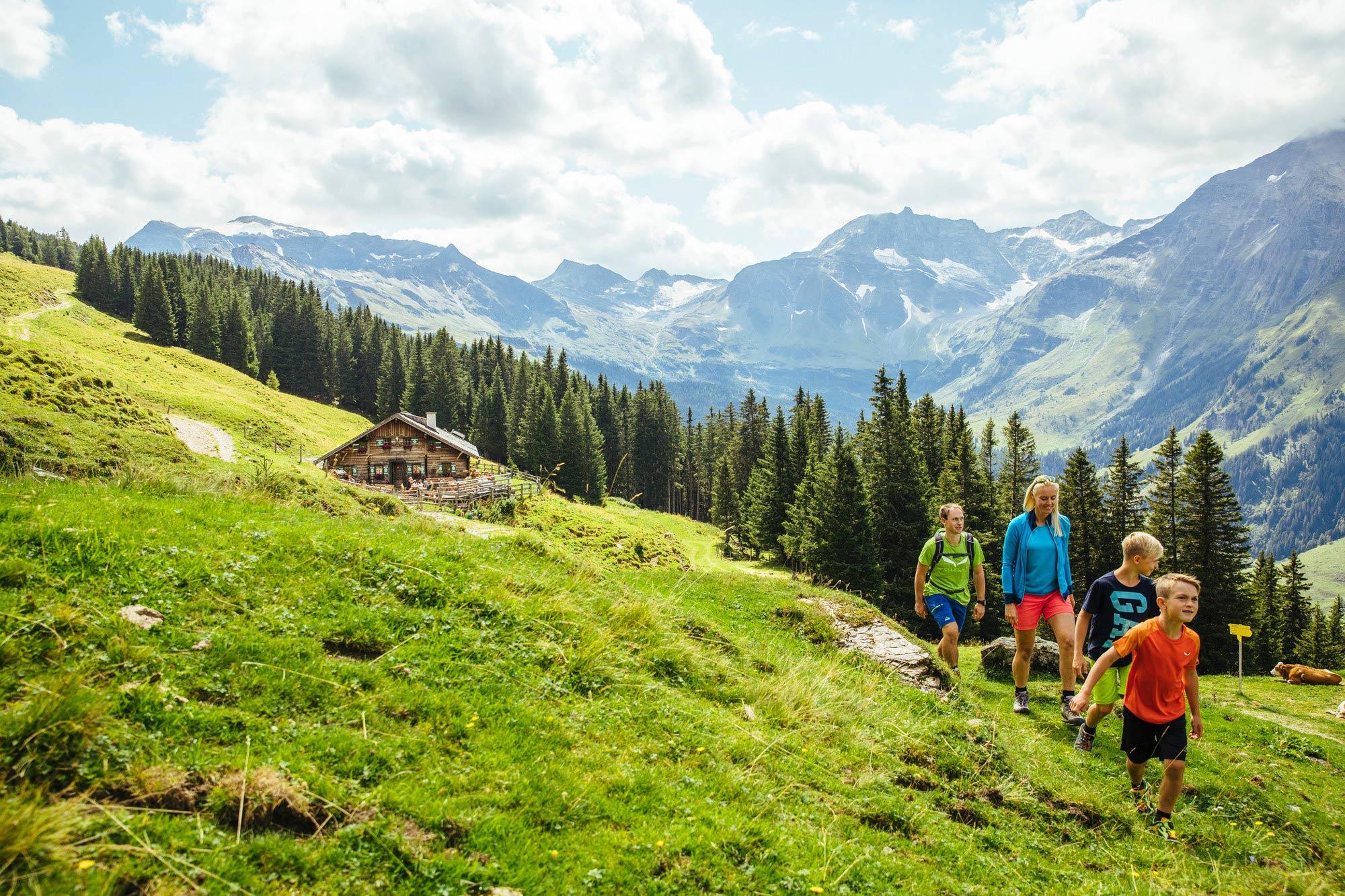 Erst durch den Wald und dann auf die Alm © SalzburgerLand Tourismus GmbH