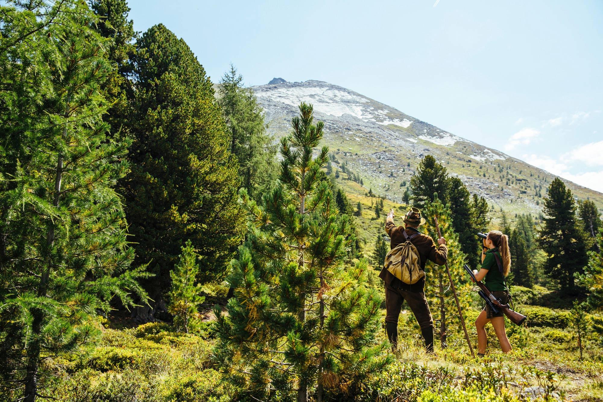Wald und Berge im SalzburgerLand © SalzburgerLand Tourismus GmbH