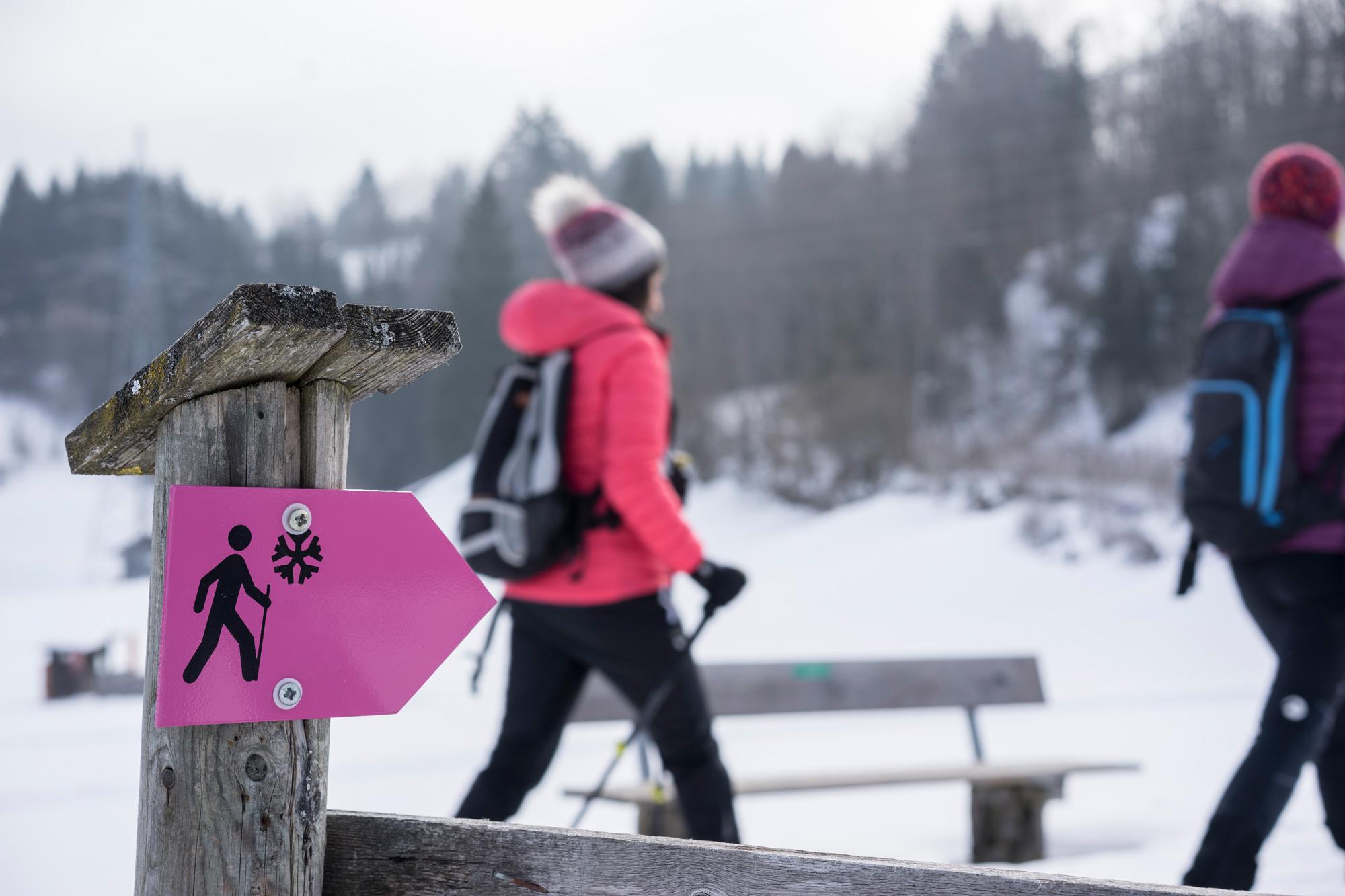 Magentafarbige Schilder weisen den Winterwanderweg © Tirol Werbung, Peter Neusser