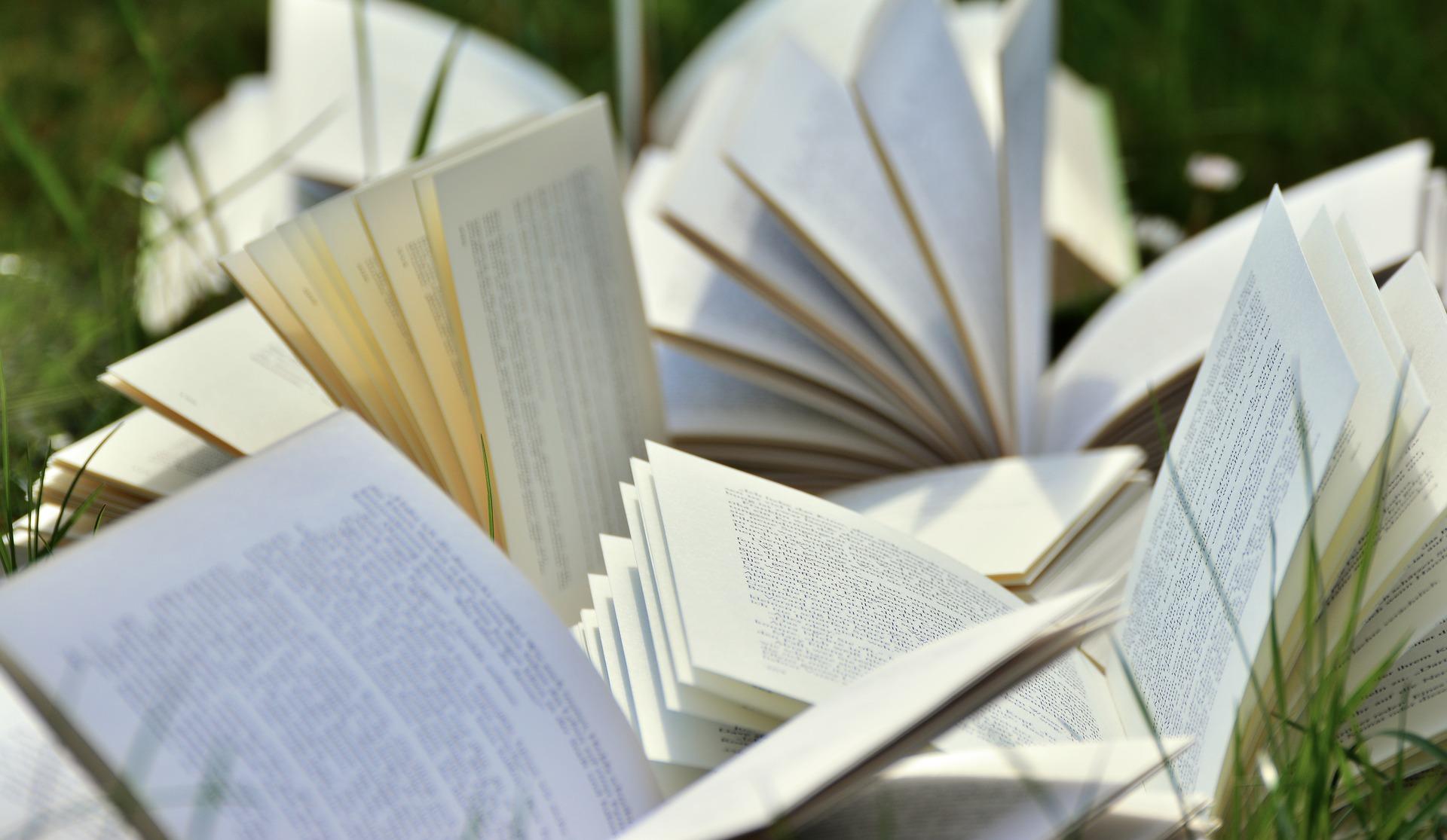 Lesestoff fürs neue Jahr © pixabay