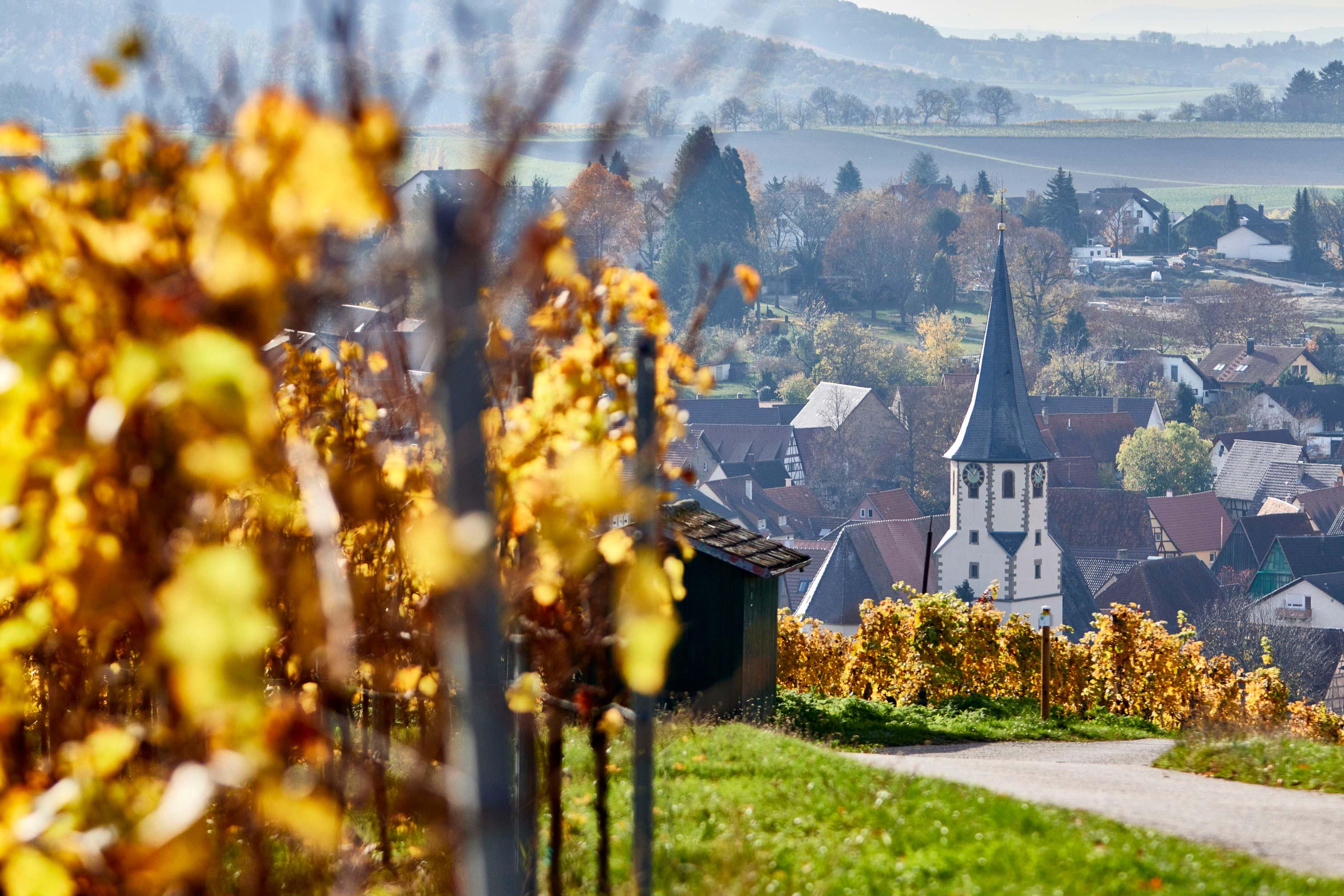 Herbststimmung auf dem Eppinger Linien Weg © Kraichgau-Stromberg Tourismus e.V., Christian Ernst