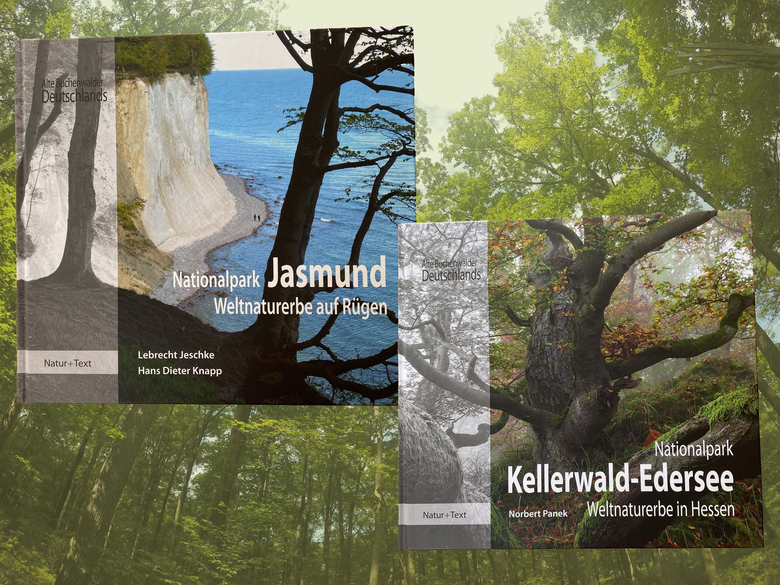 5-teilige Serie Alte Buchenwälder Deutschlands, Natur Text Verlag