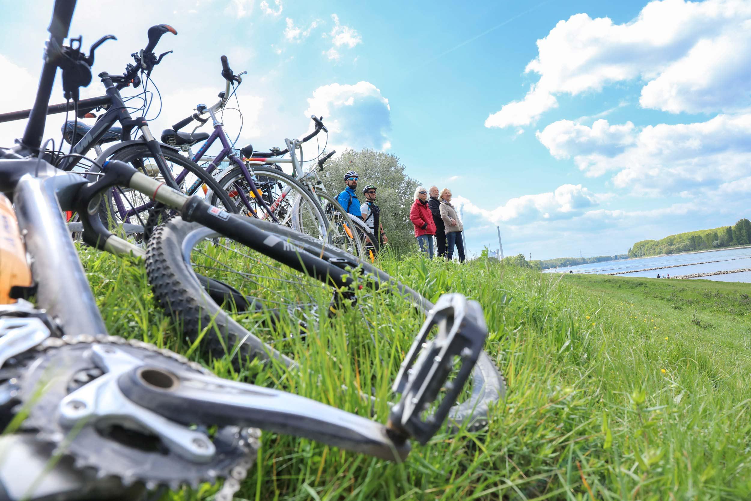 NaturRadTour Karlsruhe - Unterwegs am Rhein © KTG, Foto Fabry