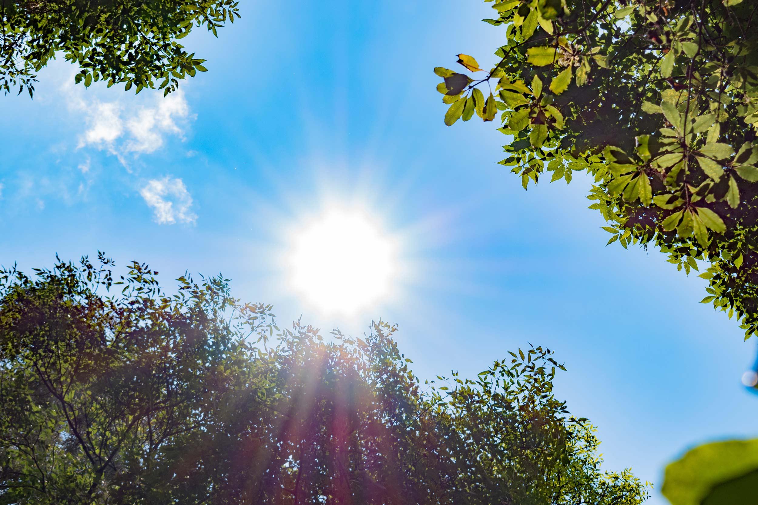 Sonnengenuss ohne Sonnenbrand ©WetterOnline