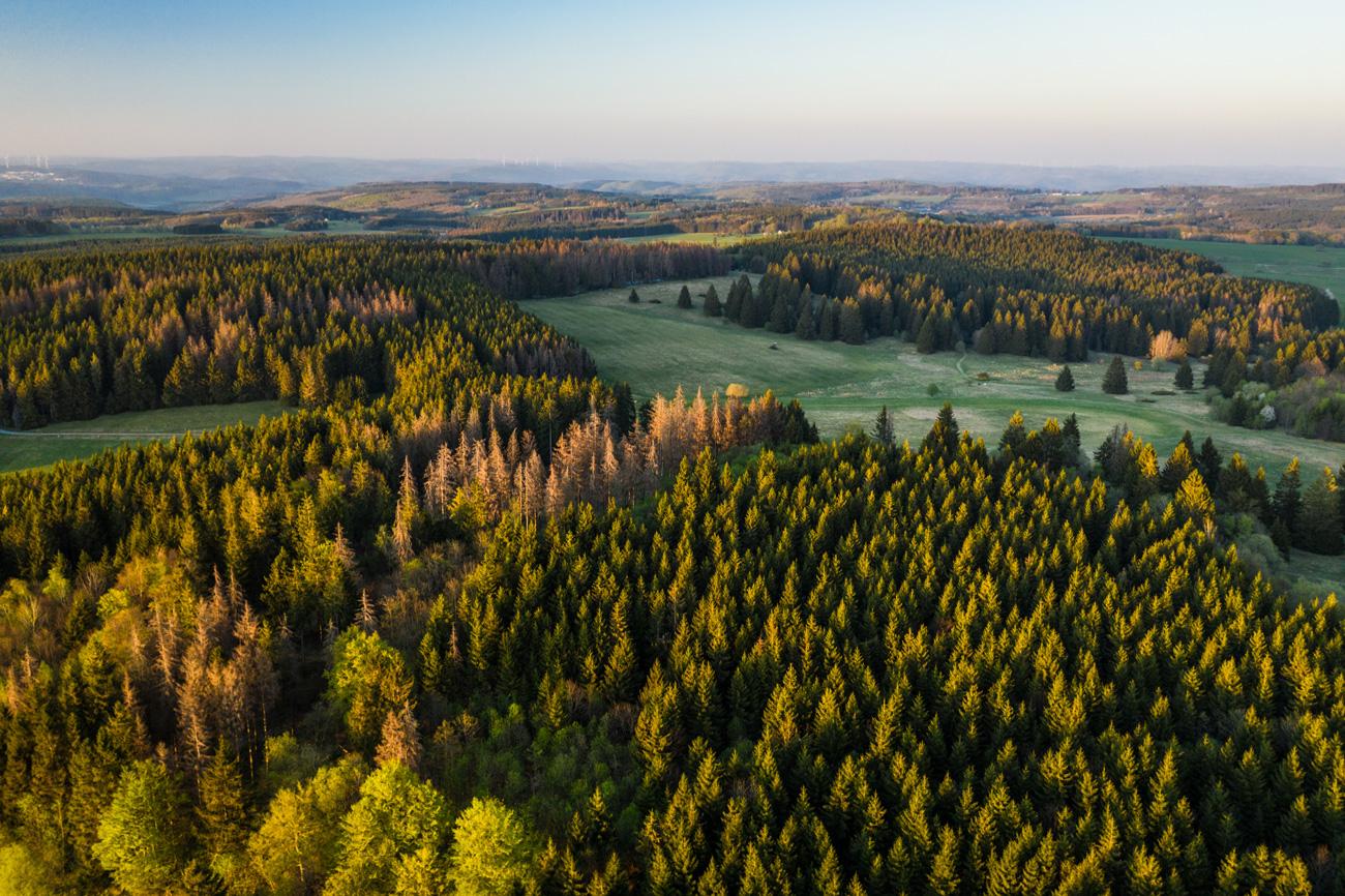 Wandervielfalt im Westerwald © Dominik Ketz