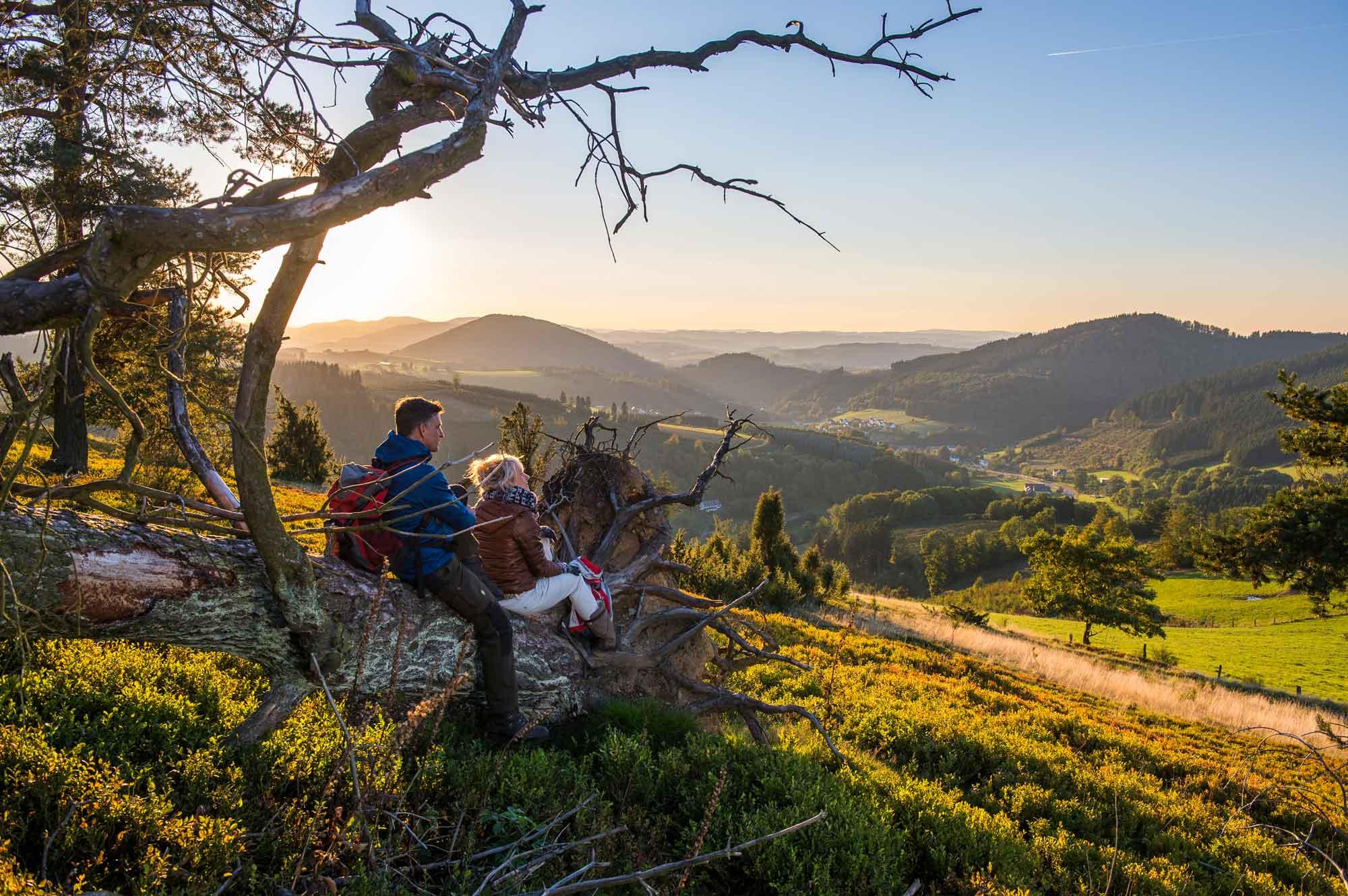 Weite Ausblicke wie diese erwarten Gäste im Schmallenberger Sauerland – ein perfekt markiertes Wanderwegenetz inklusive © Schmallenberger Sauerland Tourismus