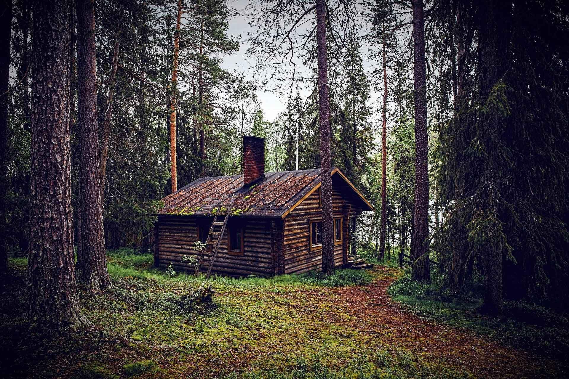 Eine Waldhütte wie diese bestimmte die Kindheit Ekelunds © Pixabay