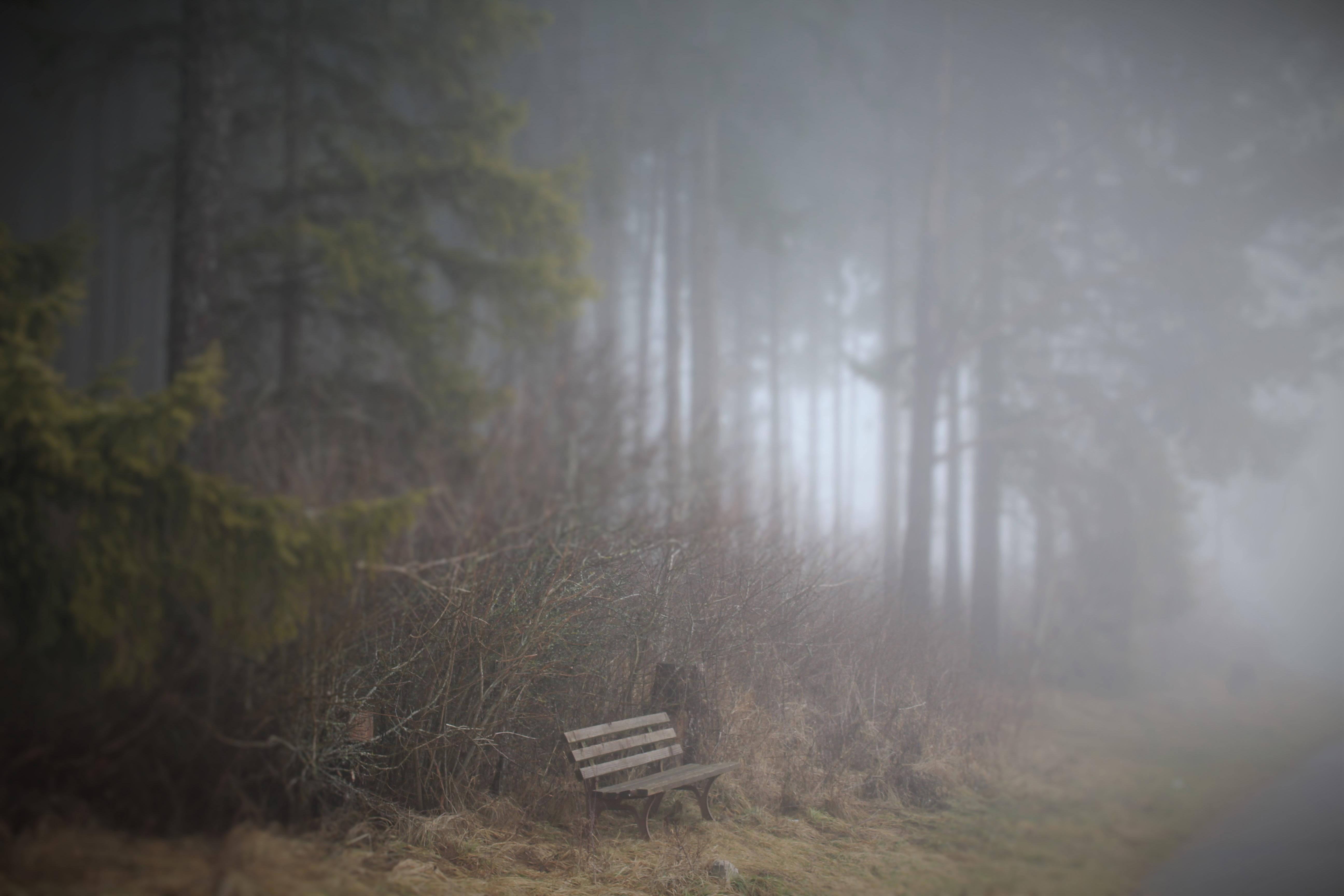 Tatort Dittishausen: Krimi-Wander-Tage