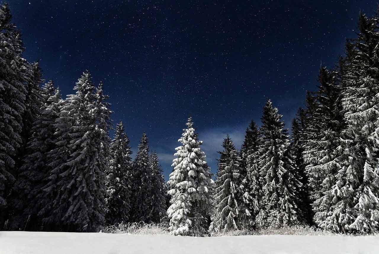 Internationale Winterwanderung Haspelmoor