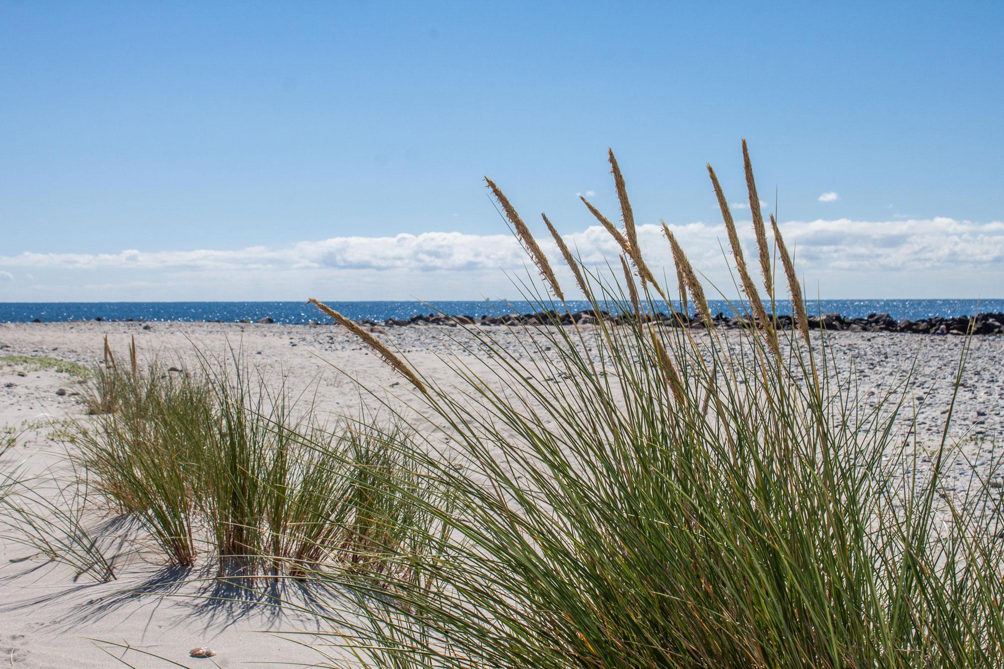 WWF Watt- und Inselexpedition Baltrum