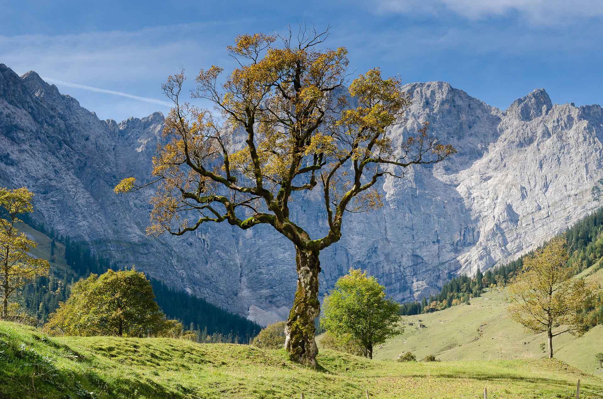 Biolectra 24h Trophy: Alpenwelt Karwendel