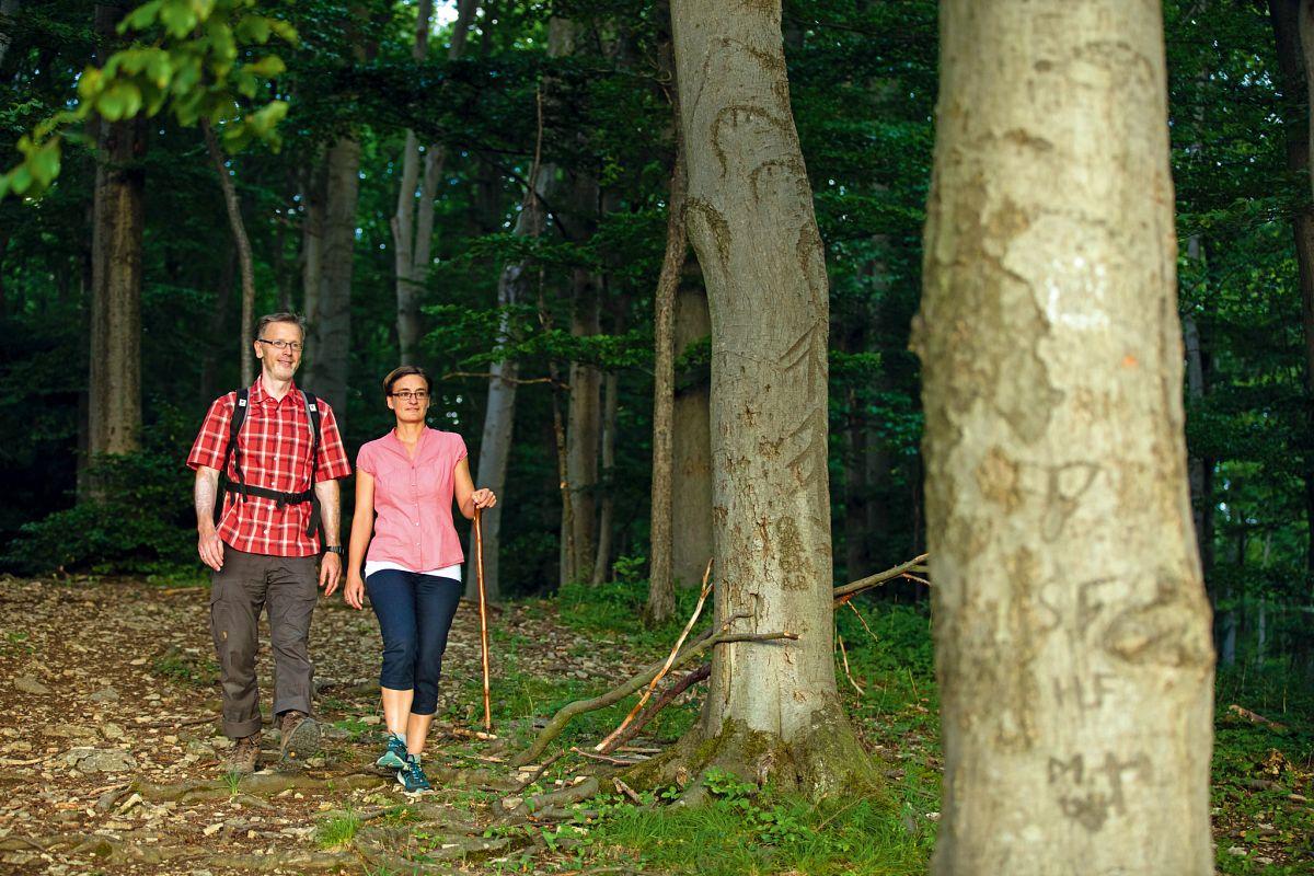 Wanderer im Naturpark Eichfeld-Hainich-Werratal © Tino Sieland