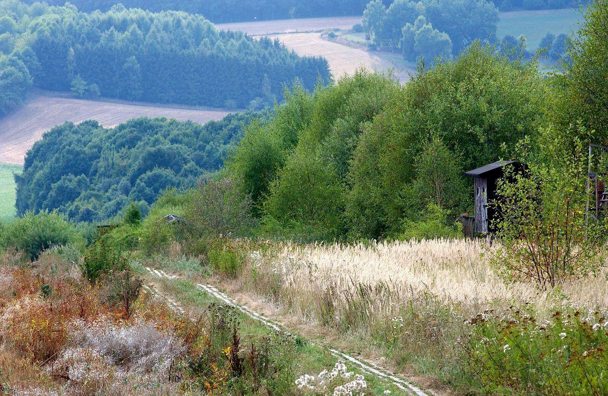 DDR-Kolonnenweg am Grenzweg Teistungen © HVE Eichsfeld