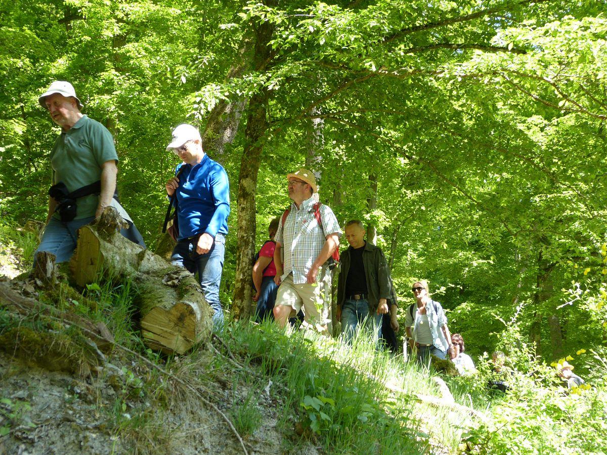 Die Wandergruppe um Manuel Andrack auf dem Wispertaunussteig © Thomas Matusek