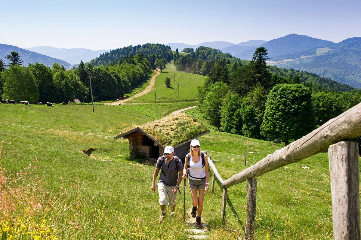 Wandern im Vogesenmassiv © INFRA, Massif des Vosges