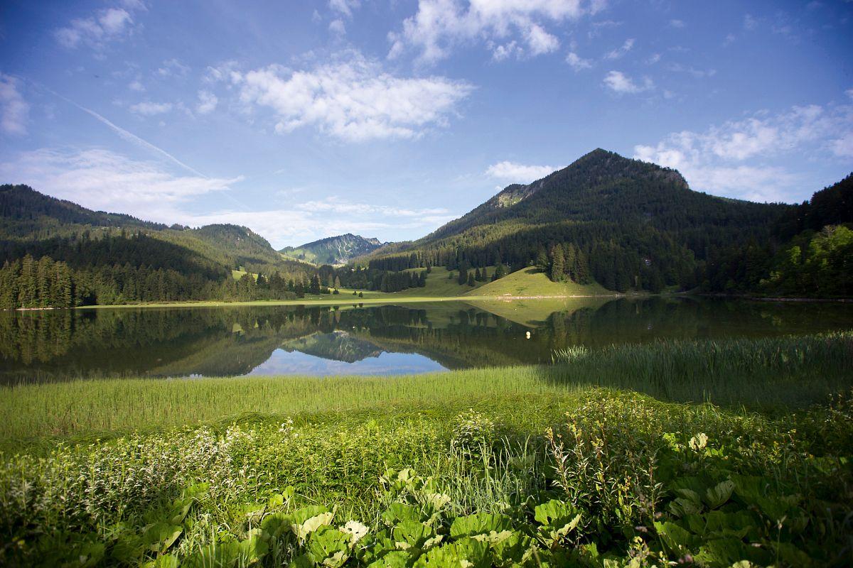 Das grüne Paradies am Spitzingsee © Hansi Heckmair