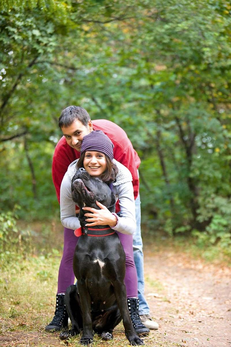 Der Hund kommt mit!  Natürlich auch zum Wanderurlaub © iStock