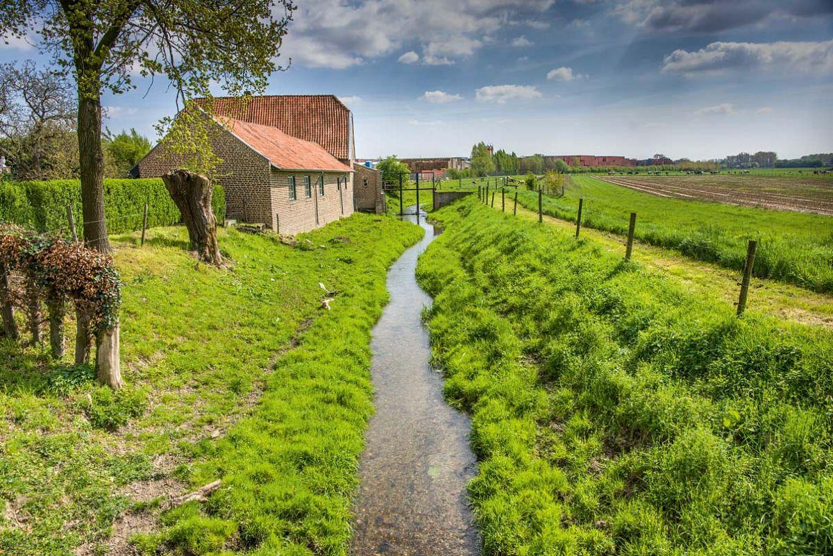 Idylle in der Grenzregion: Zahlreiche Wanderwege im niederländischen Susteren erwarten die Besucher des Naturparks © Naturpark Maas-Schwalm-Nette, Marcel Hectors