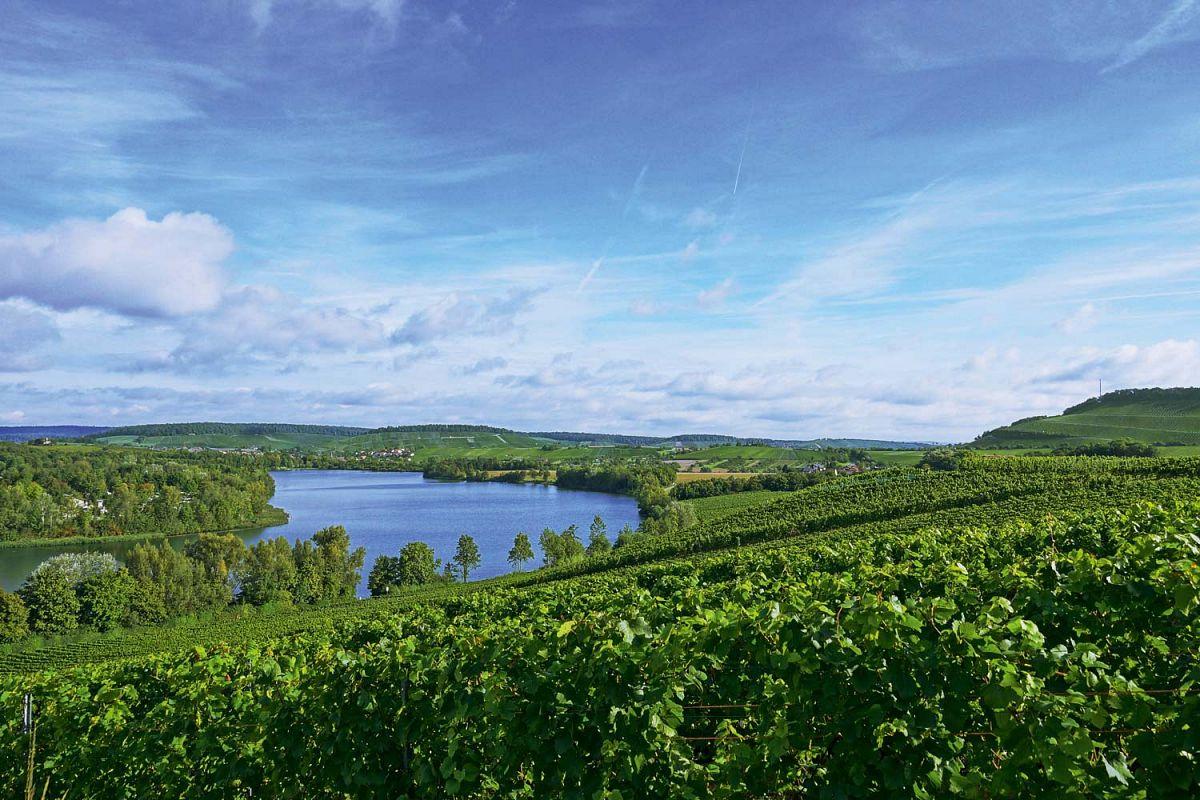 Das HeilbronnerLand besticht mit weiten Panoramablicken © Tourismus im Weinsberger Tal