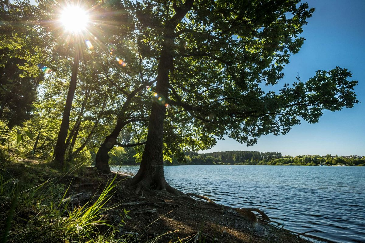 Am Brucher See die Sonne spüren ©Dominik Ketz