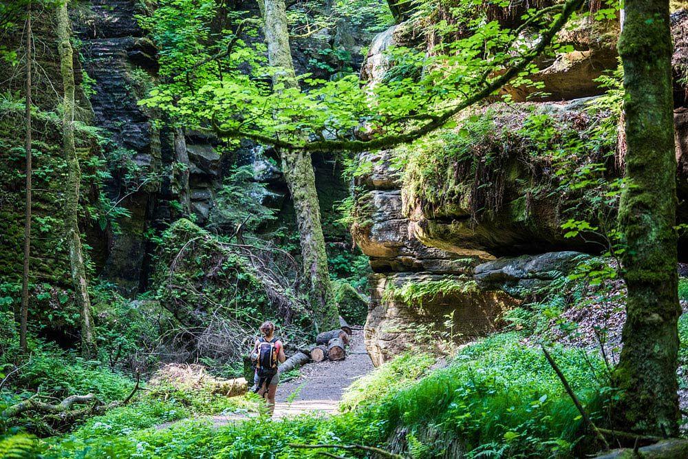 Natur als Spielplatz in der Nationalparkregion Sächsisch-Böhmische Schweiz © Sebastian-Thiel