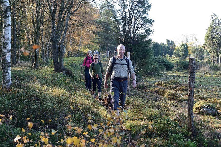 Hallandsåsvandring © Pekko Svensson
