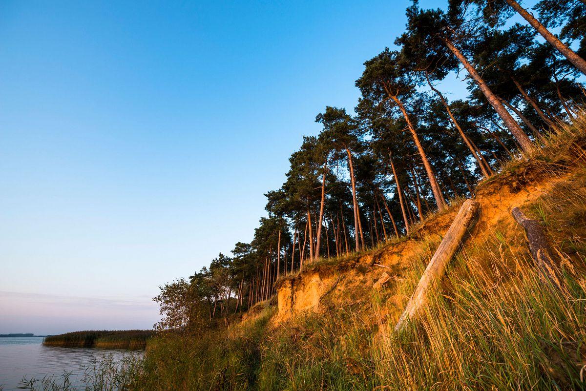 Wasser und Wald auf Usedom bei Gnitz © Usedom Tourismus GmbH, Dirk-Bleyer