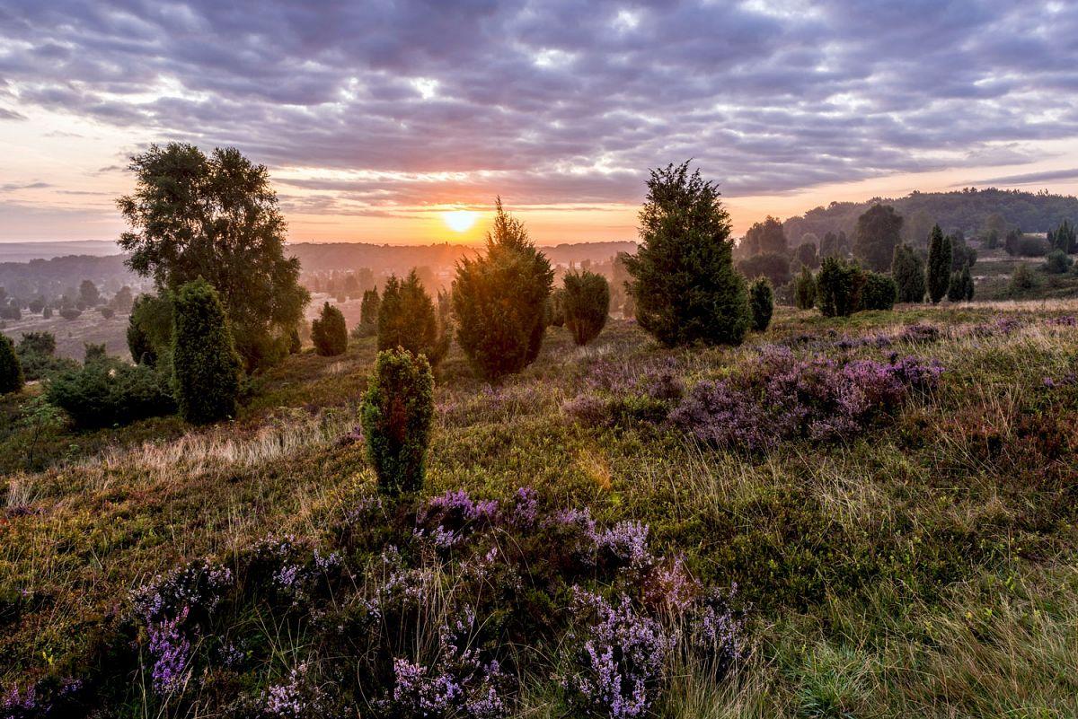 Besondere Momente: Sonnenuntergang am Wilseder Berg. © Lüneburger Heide GmbH