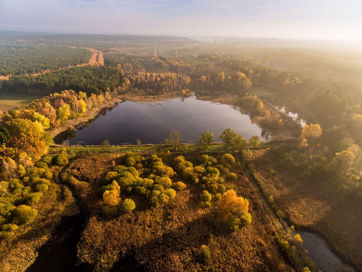 Herbstliche Farben kleiden die Wildecker Teiche neu ein. © Lüneburger Heide GmbH