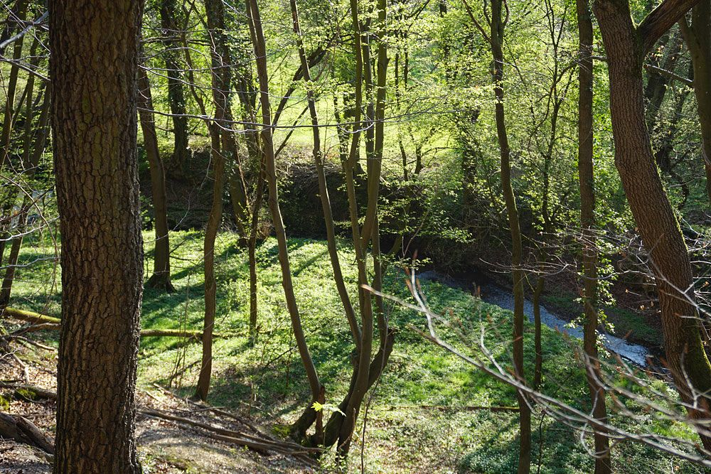 Der Bachlauf unten im Tal