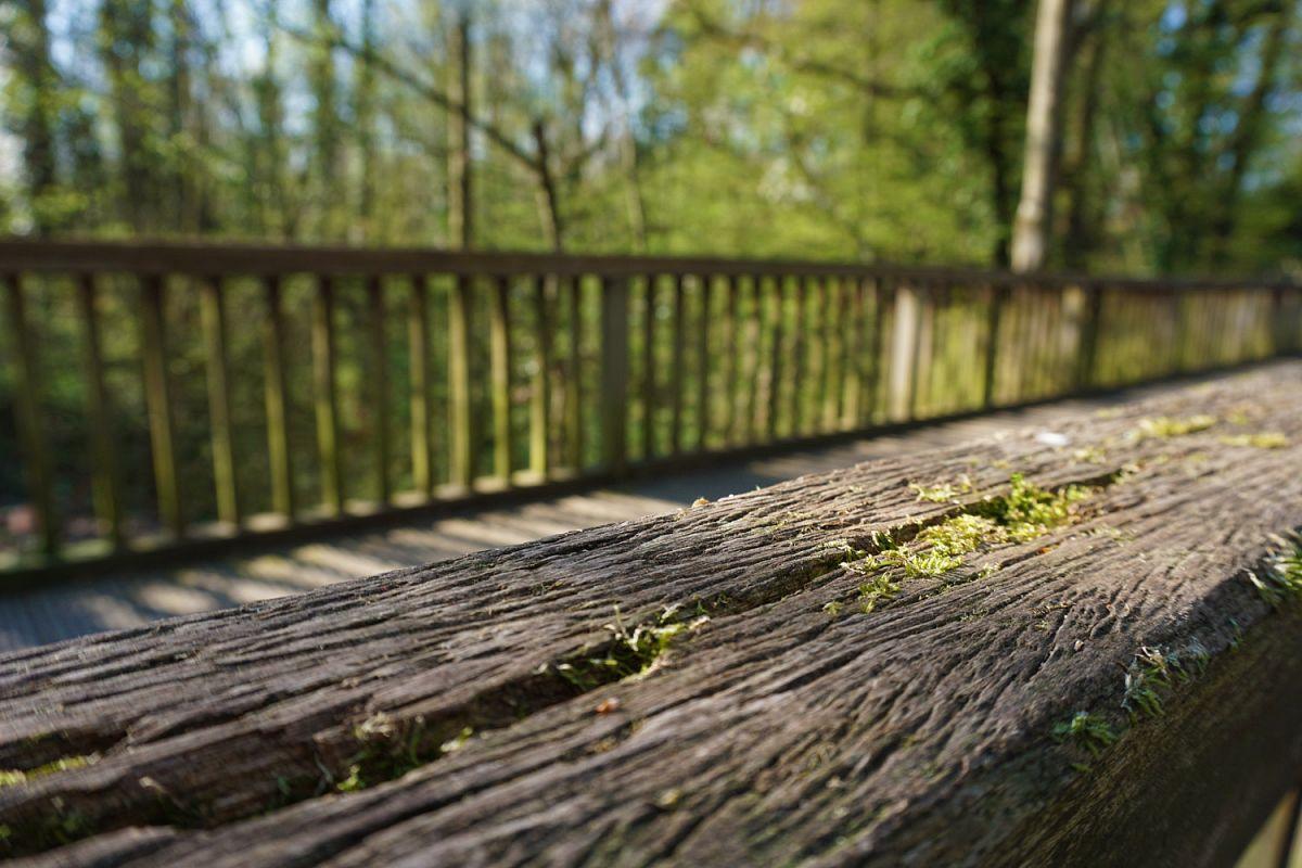 Auf der Holzbrücke