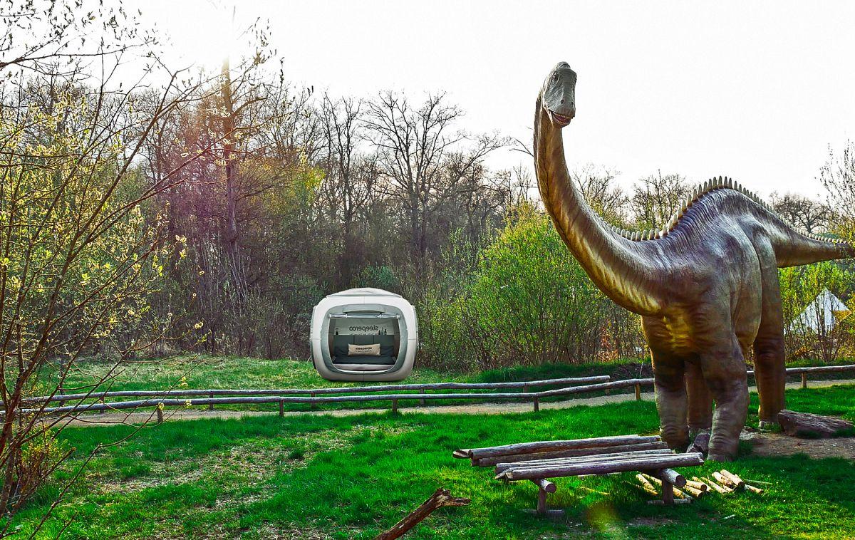 Übernachten im Dinosaurierpark in der Südeifel © sleeperoo