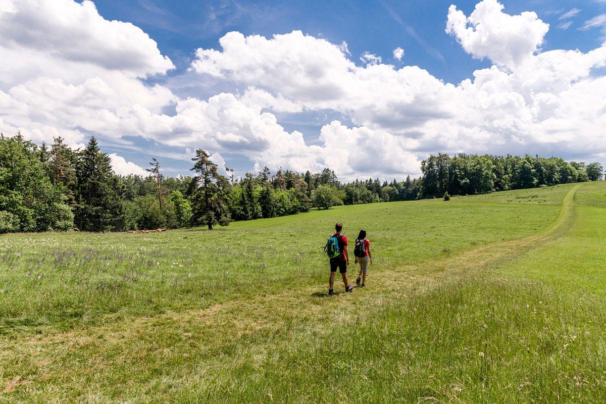 Wiesenlandschaft beim Raichberg © TMBW, G. Lengler