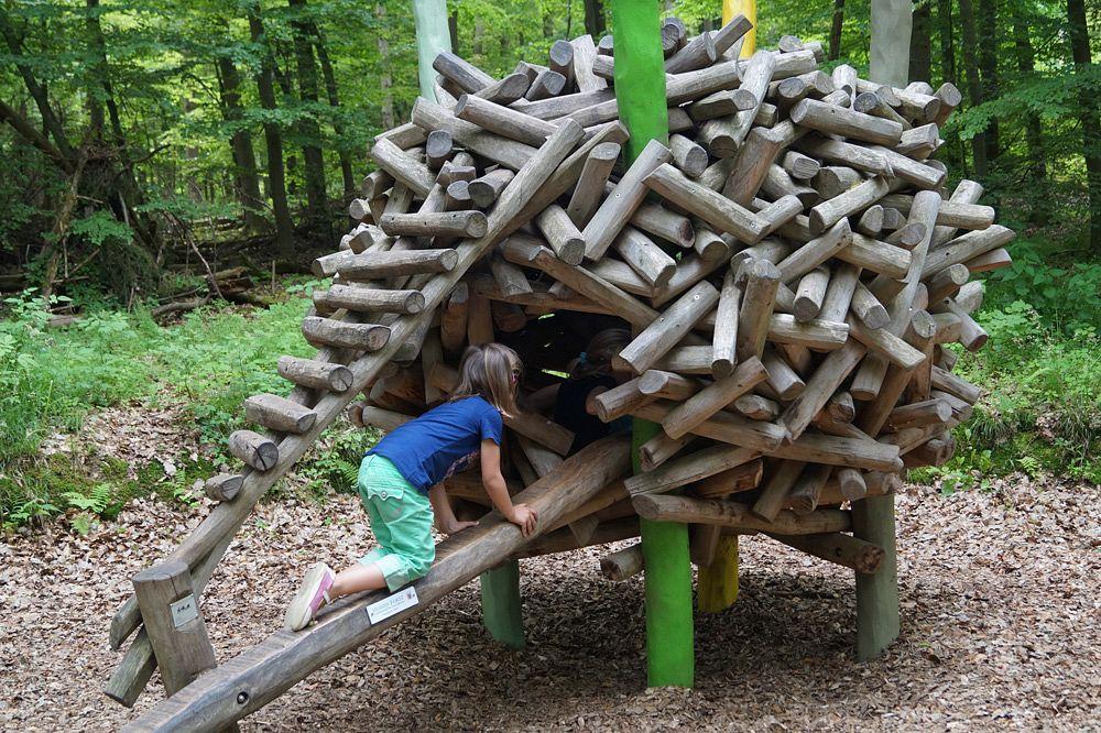 So wohnen wohl die Eichhörnchen © Edersee Touristic GmbH