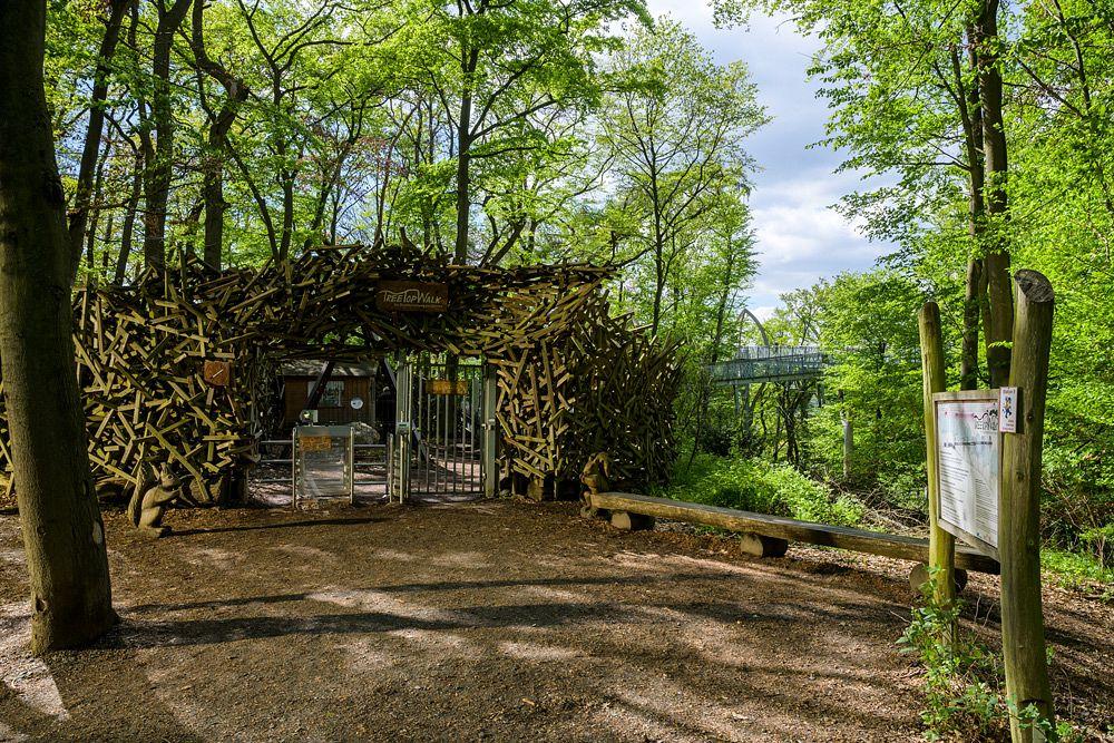 Der Eingang zum Baumkronenweg © Peter Kappest