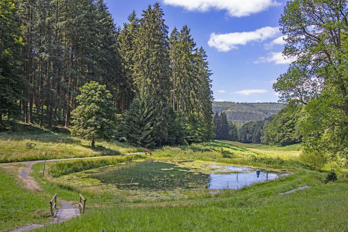 Blick ins Haseltal bei Bad Orb © Tourismusverband Spessart-Mainland / Holger Leue
