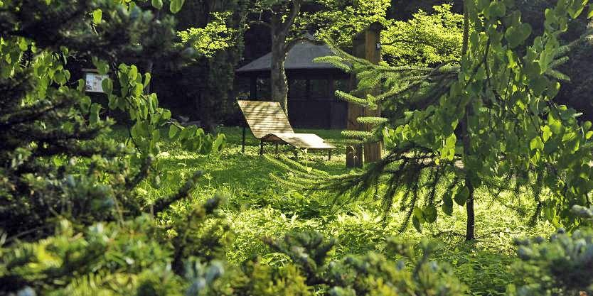 Idyllisches Pausenplätzchen im Buddenberg Arboretum