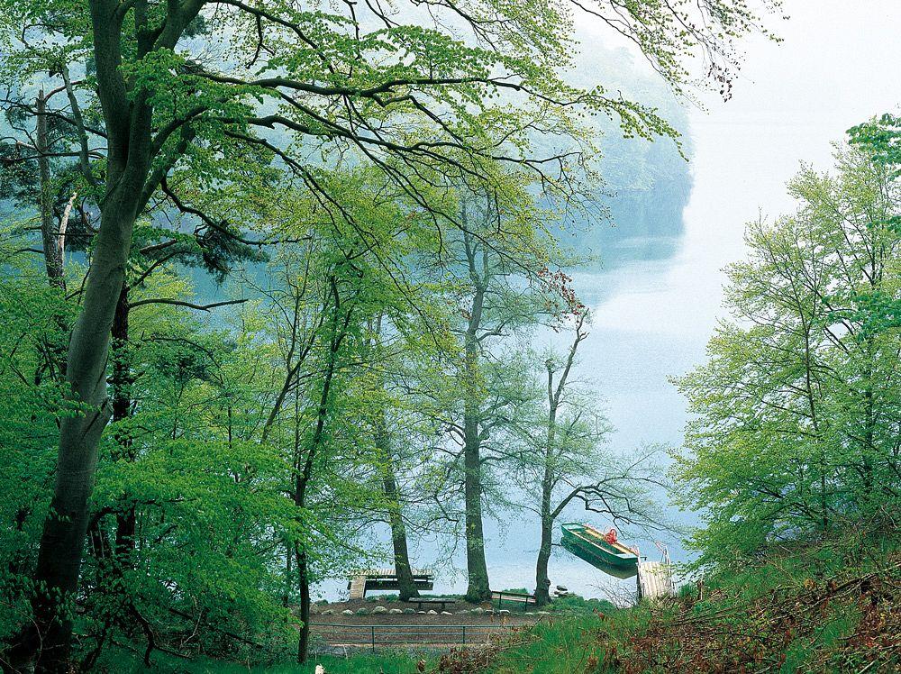 Die Fähranlegestelle am Schmalen Luzin ©Tourismusverband Mecklenburg-Vorpommern