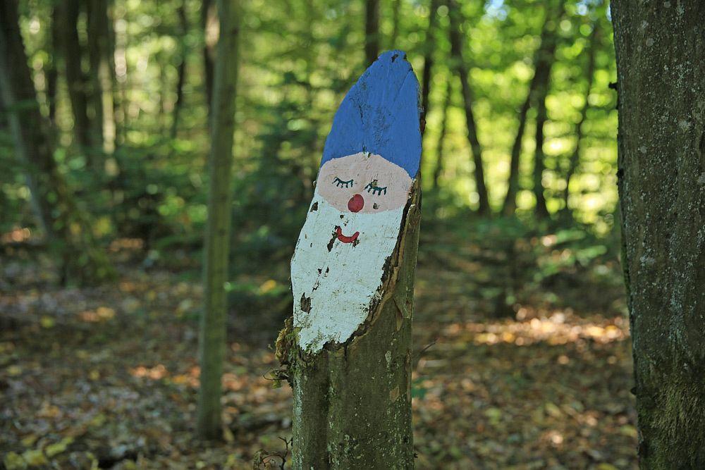 Der Wald bei der Nahequelle ist Lebensraum für Zwerge ...